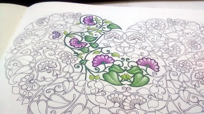 ideias para pintar livro jardim secreto livro Tive até um pouquinho